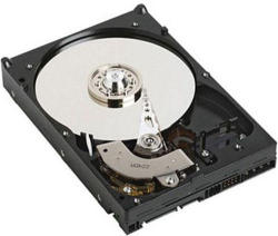 "Dell 3.5"" 1TB 7200rpm SATA 2 D-2T51W-534074-111"