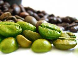Semiramis Brasil Santos zöld kávé, őrölt, 250g