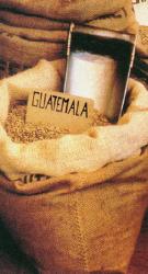 Semiramis Guatemala Amate, szemes, 1kg