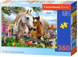 Castorland A nyári mezőn 260 db-os (27309)