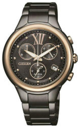 Citizen FB1317