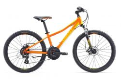 GIANT XTC JR 1 DISC 24 (2016)