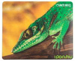 NATEC Lizard NPF-0696