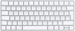 Apple Magic Keyboard (2015) (MLA22)