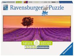 Ravensburger Panoráma puzzle - Nature Edition - Levendula 1000 db-os (15068)