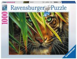 Ravensburger Titokzatos tigris 1000 db-os (19486)