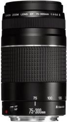 Canon EF 75-300mm f/4-5.6 III (ACC21-9892201)