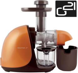 G21 Gourmet (GZ-G5V)