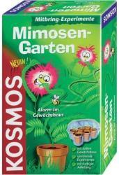 Kosmos Mimóza kert kísérletező készlet