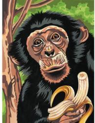 Reeves Festés számok után - Csimpánz