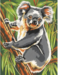 Reeves Festés számok után - Koala