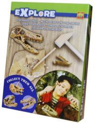 SES Explore - Őskövület kereső - Velociraptor koponya