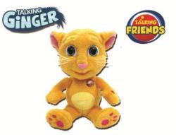 Dragon-i Toys Talking Ginger - Pisica vorbareata (DRAG80802G)