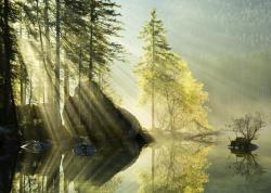 Heye Magic Forests - Morning Glow 1000 db-os (29716)
