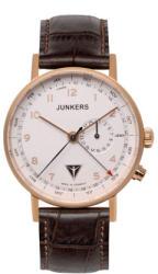 Junkers Eisvogel F13 6736