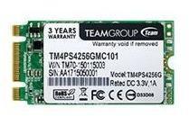Team Group 256GB M.2 2242 TM4PS4256GMC101