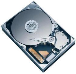 Fujitsu 300GB SAS S26361-F5568-L130