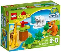 LEGO Duplo - Állat bébik (10801)