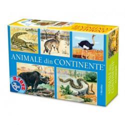 D-Toys Animale din Continente - Joc educativ (71750)