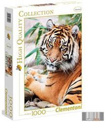 Clementoni Szumátrai tigris 1000 db-os (39295)