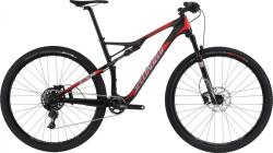 Specialized Epic Comp Carbon 29 Worldcup (2016)