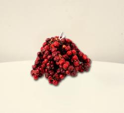 CHILI-TRADE Rövid Cseresznyepaprika Fűzér (50cm)