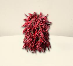 CHILI-TRADE Ceruza Erős Paprika Fűzér (1m)