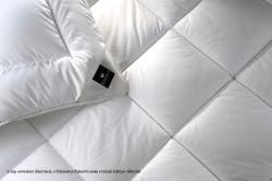 Billerbeck Cottona dupla pamutpaplan 200x220cm