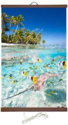 PION Тропически риби