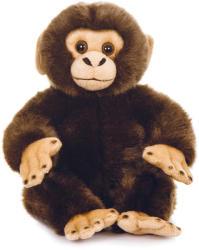 Teddykompaniet Teddy Wild - Csimpánz