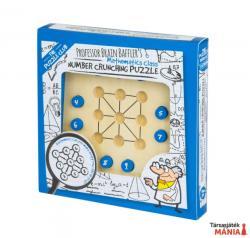Professor Puzzle Brain Baffler's Number Crunching
