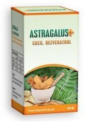 Astragalus+EGCG, Rezveratrol kapszula - 100 db