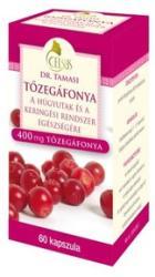 Celsus Dr Tamasi Tőzegáfonya kapszula - 60 db