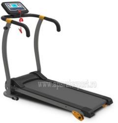 FitTronic A115