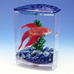Penn-Plax Műanyag Betta akvárium (10x10x15cm)