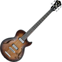 Ibanez AGBV-205A