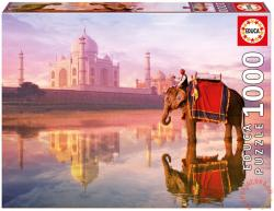 Educa Elefánt a Taj Mahalnál 1000 db-os (16756)