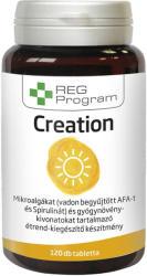 REG Program Creation tabletta - 120 db