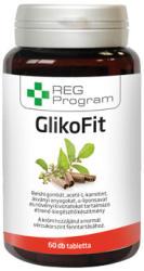 REG Program GlikoFit tabletta - 60 db