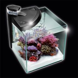 NEWA More tengeri akvárium szett (30L)