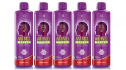 LR Health & Beauty LR Mind Master Red 5x500ml