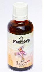 EzerJóFű Echinacea plusz tinktúra 50ml