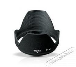 SIGMA S633001