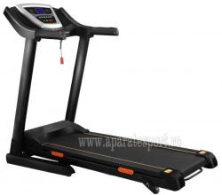 FitTronic DK19AI