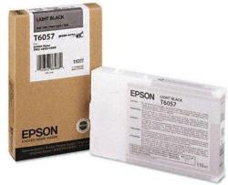 Epson T6057