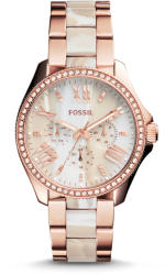 Fossil AM4616