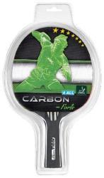 JOOLA Carbon Forte