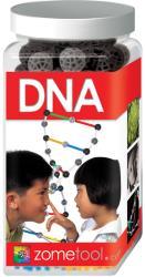 Zometool DNA - DNS molekula