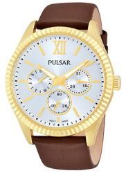 Pulsar PP6144