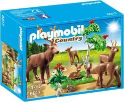 Playmobil Country - Szarvascsalád (6817)